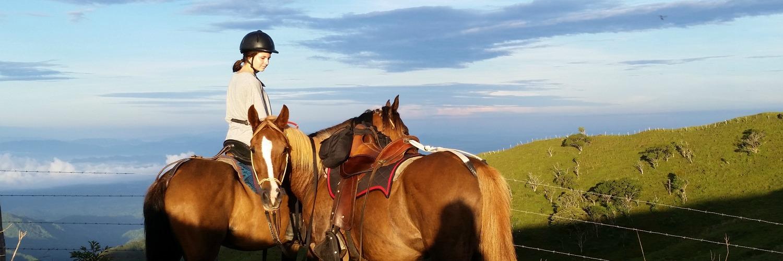 Smiling Horses Monteverde sunrise