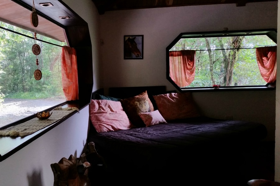 TreeTop House Canopy 4
